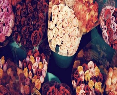 monceau-fleurs-188