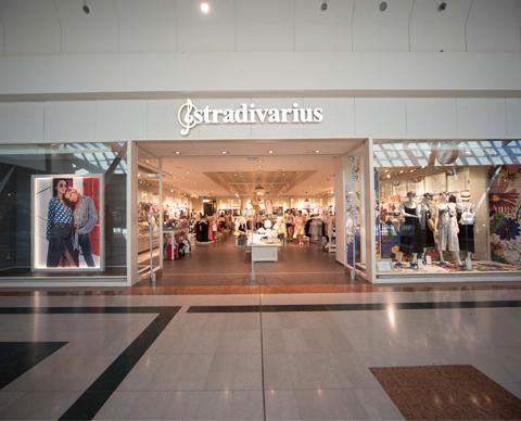 stradivarius-480x388