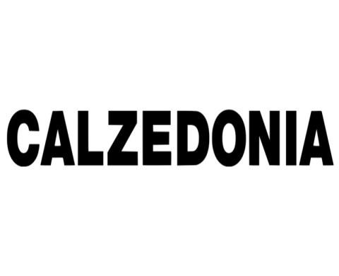 calzedonia-658