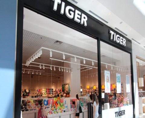 tiger-873