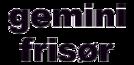 gemini-fris-r-346