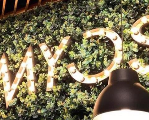 myos1920x580