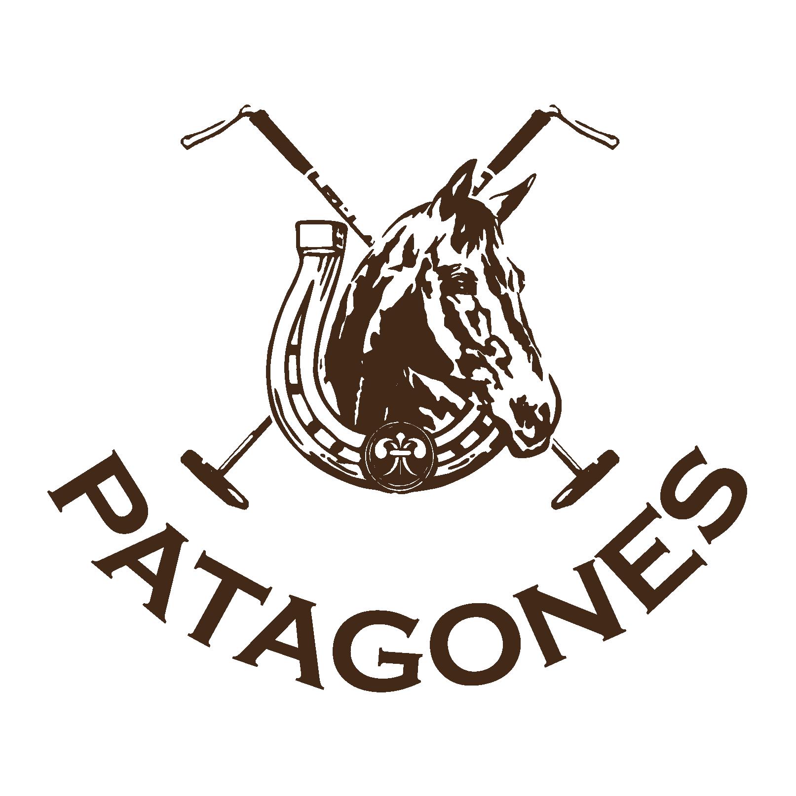 LOGO PATAGONES BUENO