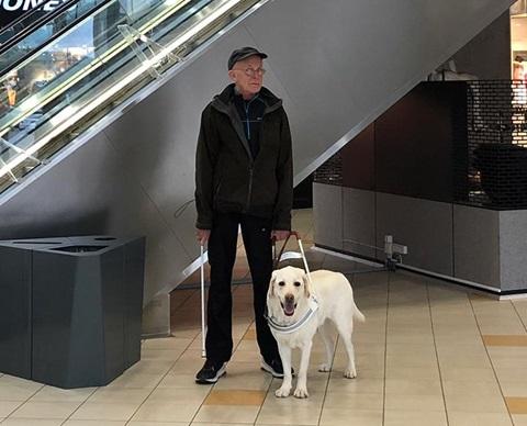 Servicehund